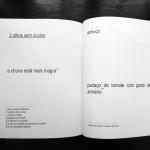 anuros_raquelstolf_ciranda3