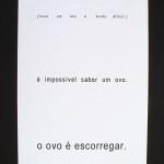 invisívelaovonu-livropequeno2