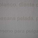 det9Listadecoisasbrancas_In-sonora2009