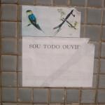 SOUTODOOUVIDOS_raquelstolf4