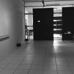 marparadoxo-instalação-expoRiodoSul-RaquelStolf-6<